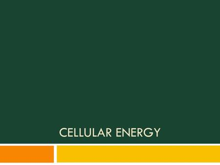 CELLULAR ENERGY.  All cells require energy to function  Methods of cellular energy:  Photosynthesis Photosynthesis  Cellular respiration Cellular.