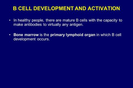 B CELL DEVELOPMENT AND ACTIVATION In healthy people, there are mature B cells with the capacity to make antibodies to virtually any antigen. Bone marrow.