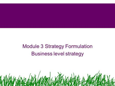 Module 3 Strategy Formulation Business level strategy.