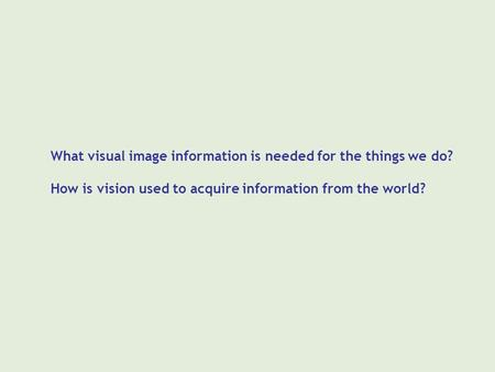What visual image information is needed for the things we do? How is vision used to acquire information from the world?