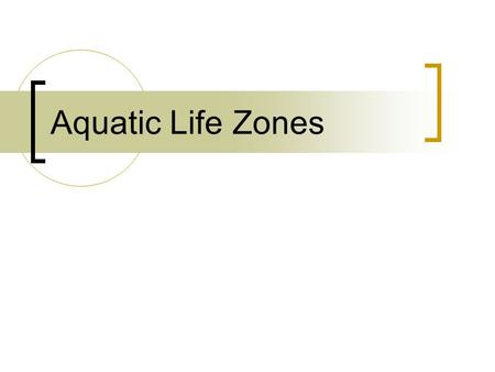 Aquatic Life Zones. Marine Biomes Coastal Zone Nearest to the shoreline Relatively warm, nutrient rich, shallow. Ample sunlight. Most productive marine.