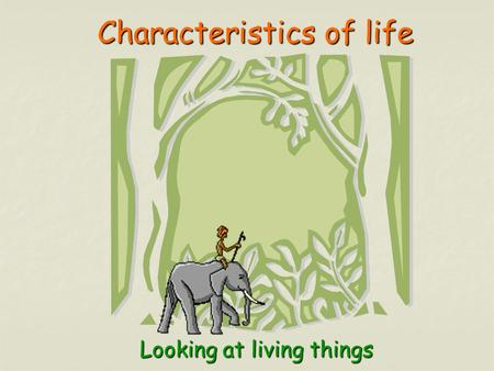 Characteristics of life Characteristics of lifeLooking at living things.