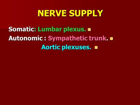 NERVE SUPPLY Somatic: Lumbar plexus. Somatic: Lumbar plexus. Autonomic : Sympathetic trunk. Autonomic : Sympathetic trunk. Aortic plexuses. Aortic plexuses.