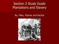 Section 2 Study Guide Plantations and Slavery By: Mike, Marlow and Rachel.