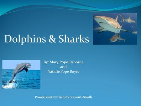 Dolphins & Sharks By: Mary Pope Osborne and Natalie Pope Boyce PowerPoint By: Ashley Stewart-Smith.