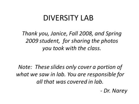 DIVERSITY LAB Thank you, Janice, Fall 2008, and Spring 2009 student, for sharing the photos you took with the class. Note: These slides only cover a portion.