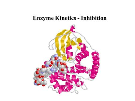 Enzyme Kinetics - Inhibition. Types of Inhibition Competitive Inhibition Noncompetitive Inhibition Uncompetitive Inhibition Irreversible Inhibition.