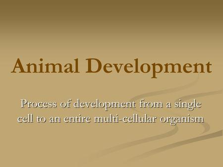 Animal Development Process of development from a single cell to an entire multi-cellular organism.