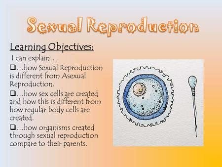 Learning Objectives: I can explain…  …how Sexual Reproduction is different from Asexual Reproduction.  …how sex cells are created and how this is different.