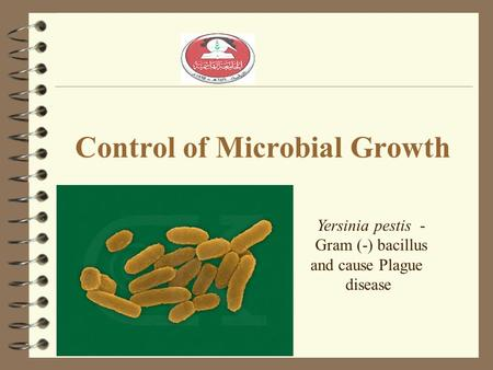 Control of Microbial Growth Yersinia pestis - Gram (-) bacillus and cause Plague disease.