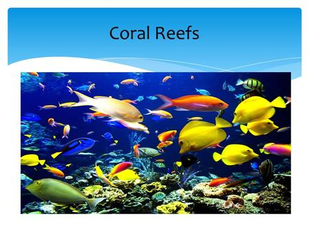 Coral Reefs.  Calcium carbonate (CaCO 3 ) makes up coral reefs.  Limestone is left over when animals grow and die.  This carbon containing molecule.