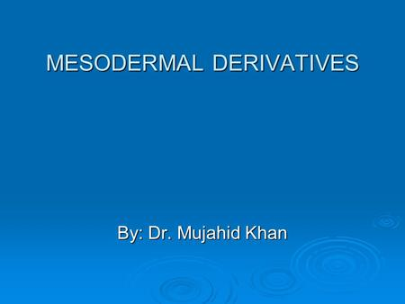 MESODERMAL DERIVATIVES By: Dr. Mujahid Khan. Derivatives  Connective tissue  Cartilage  Bone  Striated & smooth muscles  Heart  Blood & lymphatic.