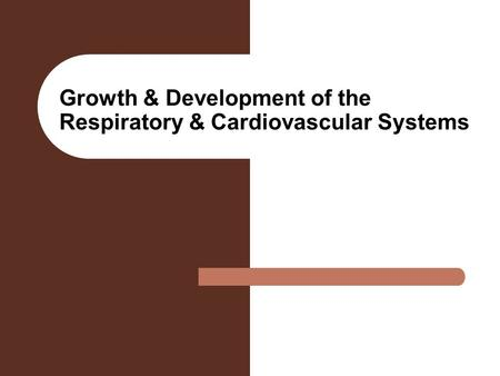 Growth & Development of the Respiratory & Cardiovascular Systems.