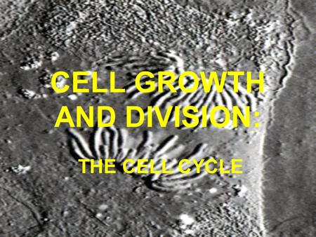 CELL GROWTH AND DIVISION: THE CELL CYCLE Importance of Cell Division Growth of organism (adding more cells) To replace dead or damaged cells (healing)