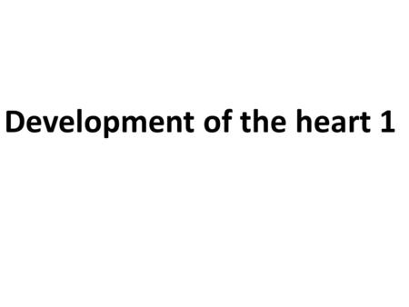 Development of the heart 1. Objectives: Understand early development of blood vessels. Basic understanding of the early stages of heart development. Describe.