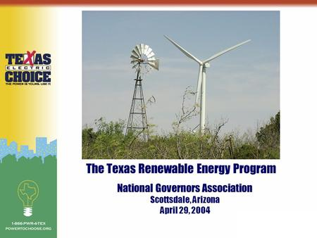 The Texas Renewable Energy Program National Governors Association Scottsdale, Arizona April 29, 2004.