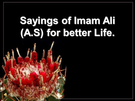 Sayings of Imam Ali (A.S) for better Life. Cochemiea poselgeri The best form of devotion to the service of Allah is not to make a show of it..