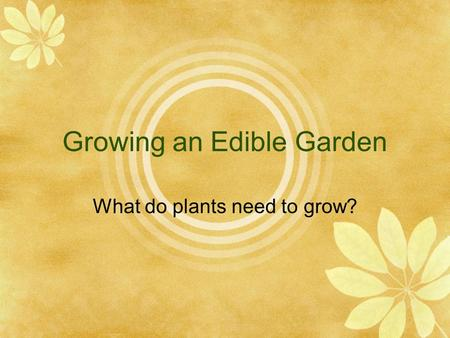 Growing an Edible Garden What do plants need to grow?