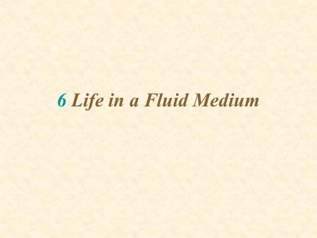6 Life in a Fluid Medium. CONSIDER FLUID MOVING IN STREAMLINES: Water flow can be visualized as streamlines Particles entrained in flow move with streamlines.