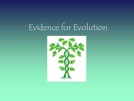 Evidence for Evolution ORGANIZE YOUR THOUGHTS! EVIDENCE FOR EVOLUTION  The Fossil Record  Radiometric Dating  Morphology  Homology  Molecular Biology.