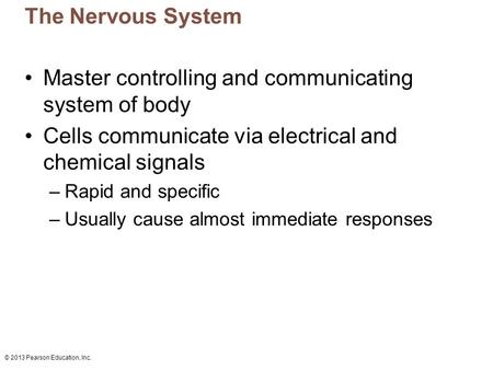 © 2013 Pearson Education, Inc. The Nervous System Master controlling and communicating system of body Cells communicate via electrical and chemical signals.