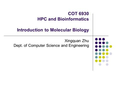 COT 6930 HPC and Bioinformatics Introduction to Molecular Biology Xingquan Zhu Dept. of Computer Science and Engineering.