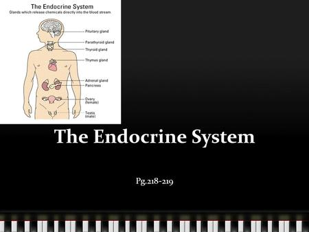 The Endocrine System Pg.218-219. The Endocrine system The body system that consists of gland that produce hormones. Gland – A group of cell that secretes.