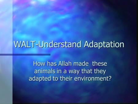 WALT-Understand Adaptation How has Allah made these animals in a way that they adapted to their environment?