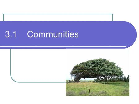 3.1 Communities. Communities Remember: a communities are interacting populations of different species.