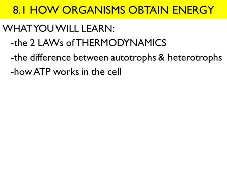 8.1 HOW ORGANISMS OBTAIN ENERGY WHAT YOU WILL LEARN: -the 2 LAWs of THERMODYNAMICS -the difference between autotrophs & heterotrophs -how ATP works in.