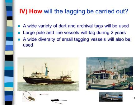 1 IV) How will the tagging be carried out? n A wide variety of dart and archival tags will be used n Large pole and line vessels will tag during 2 years.