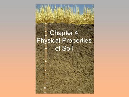 Chapter 4 Physical Properties of Soil. Texture Density Permeability Porosity Structure Tilth Compaction Temperature Color Soil physical properties are.