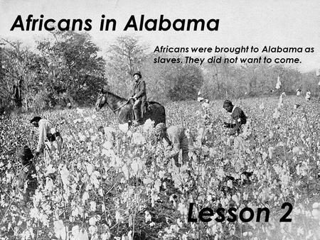 Africans in Alabama Lesson 2 Africans were brought to Alabama as slaves. They did not want to come.