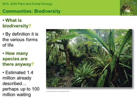 © Getty Images/Taxis BIOL 3240 Plant and Animal Ecology Communities: Biodiversity What is biodiversity? By definition it is the various forms of life How.