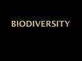 "A B Which do you like better? AB AB Bio = Bio diversity What does "" Bio "" mean?"