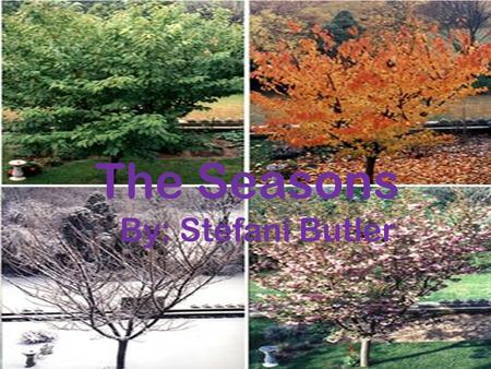 The Seasons By: Stefani Butler.  §112.4. Science, Grade 2  2b (B) plan and conduct simple descriptive investigations; (D) gather information using simple.