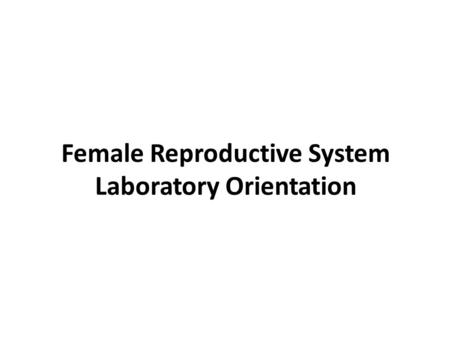 Female Reproductive System Laboratory Orientation.
