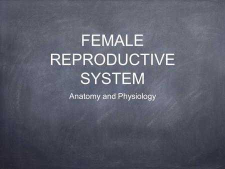 FEMALE REPRODUCTIVE SYSTEM Anatomy and Physiology.