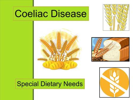 Coeliac Disease Special Dietary Needs. Coeliac Disease Questions You will be asked to answer a series of exam style questions at the end of the lesson.