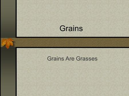 Grains Grains Are Grasses. What are grains? Grains are grasses that grow edible seeds Grains are essential for everyday cooking.