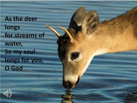 As the deer longs for streams of water, So my soul longs for you, O God.
