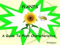 PLANTS A Guide To Plant Characteristics Biologyguy.