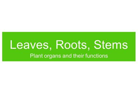 Leaves, Roots, Stems Plant organs and their functions.