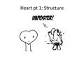 Heart pt 1: Structure. Transportation of Blood In humans, blood is always contained within blood vessels – If a blood vessel leaks blood into the tissues.