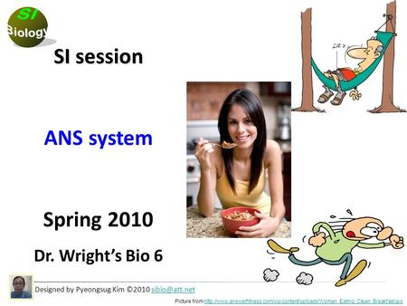 Designed by Pyeongsug Kim ©2010 SI session ANS system Spring 2010 Dr. Wright's Bio 6 Picture from