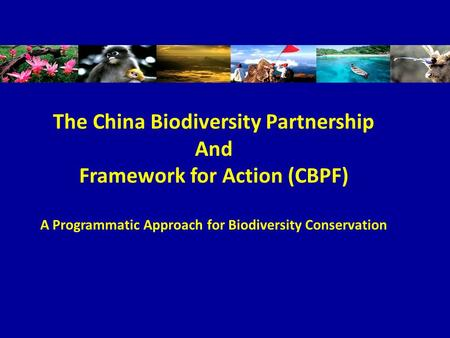 The China Biodiversity Partnership And Framework for Action (CBPF) A Programmatic Approach for Biodiversity Conservation.
