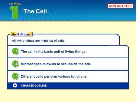 The BIG idea CHAPTER OUTLINE NEW CHAPTER The Cell CHAPTER All living things are made up of cells. The cell is the basic unit of living things. 1.1 Microscopes.