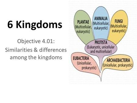 6 Kingdoms Objective 4.01: Similarities & differences among the kingdoms.