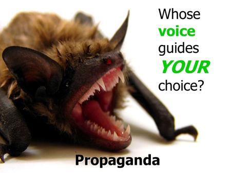 Propaganda Whose voice guides YOUR choice?. How do you decide who is the best candidate?