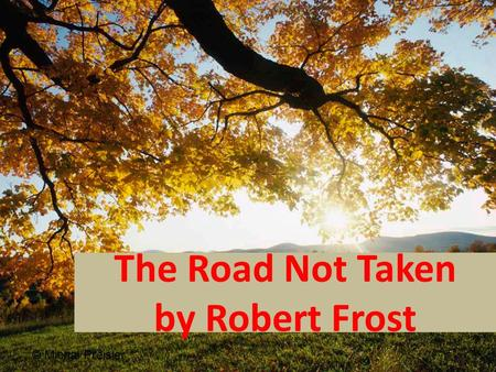 the road not taken poem analysis essay